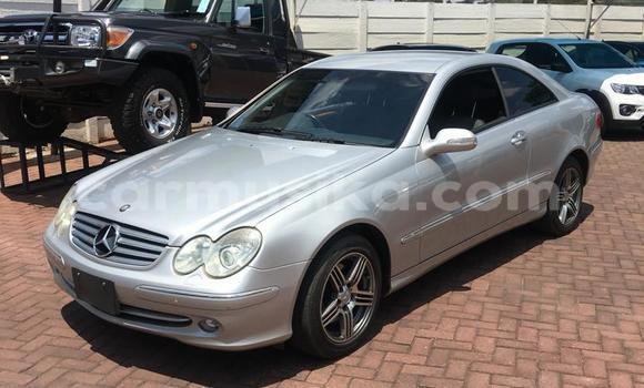 Buy Imported Mercedes‒Benz CLK–Class Silver Car in Harare in Harare