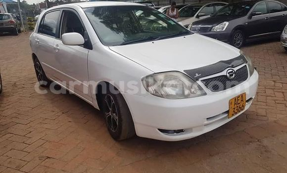 Buy Imported Toyota Runx White Car in Harare in Harare
