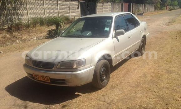 Buy Used Toyota Corolla Other Car in Harare in Harare