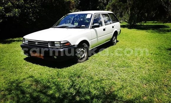 Buy Used Toyota Corolla White Car in Bulawayo in Bulawayo