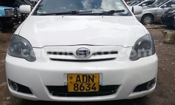 Buy Used Toyota Allex White Car in Harare in Harare