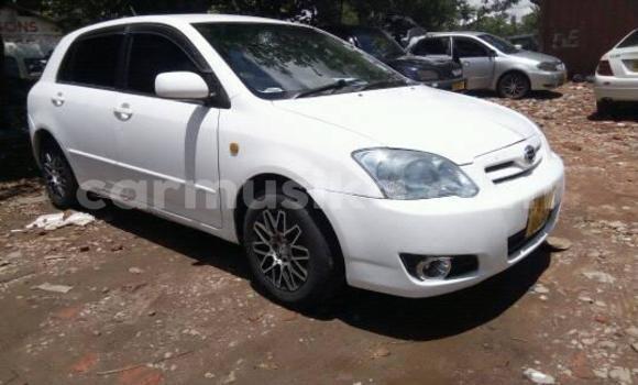 Buy Used Toyota Runx White Car in Masvingo in Masvingo