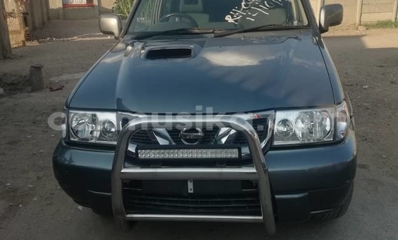 Buy Used Nissan Terrano Other Car in Harare in Harare