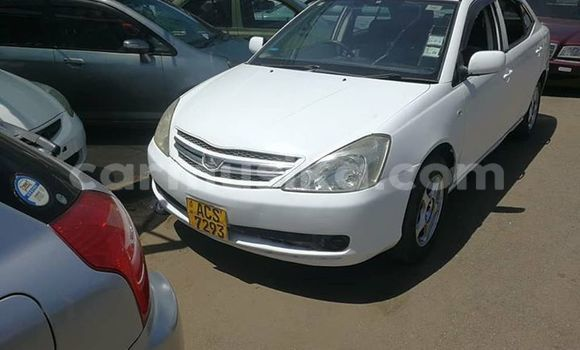 Buy Used Toyota Allion White Car in Harare in Harare
