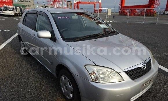 Buy Used Toyota Runx Silver Car in Beitbridge in Matabeleland South