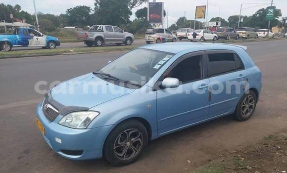 Buy Used Toyota Runx Blue Car in Harare in Harare