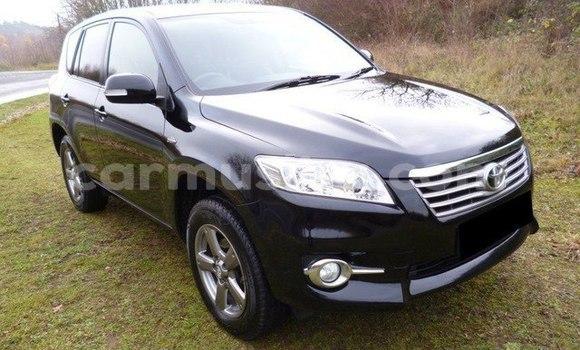 Buy Imported Toyota RAV4 Black Car in Chegutu in Mashonaland West