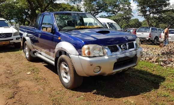 Buy Used Nissan Navara Blue Car in Harare in Harare