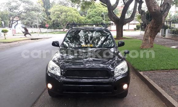 Buy Used Toyota RAV 4 Black Car in Harare in Harare