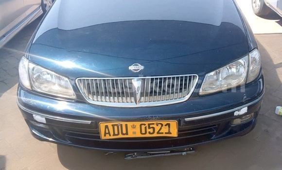 Buy Used Nissan Bluebird Sylphy Other Car in Harare in Harare