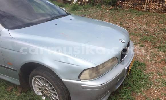 Buy Used BMW 5–Series Silver Car in Kwekwe in Midlands