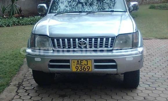 Buy Used Toyota Land Cruiser Prado Silver Car in Harare in Harare