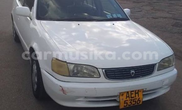 Buy Used Toyota Corolla White Car in Borrowdale in Harare